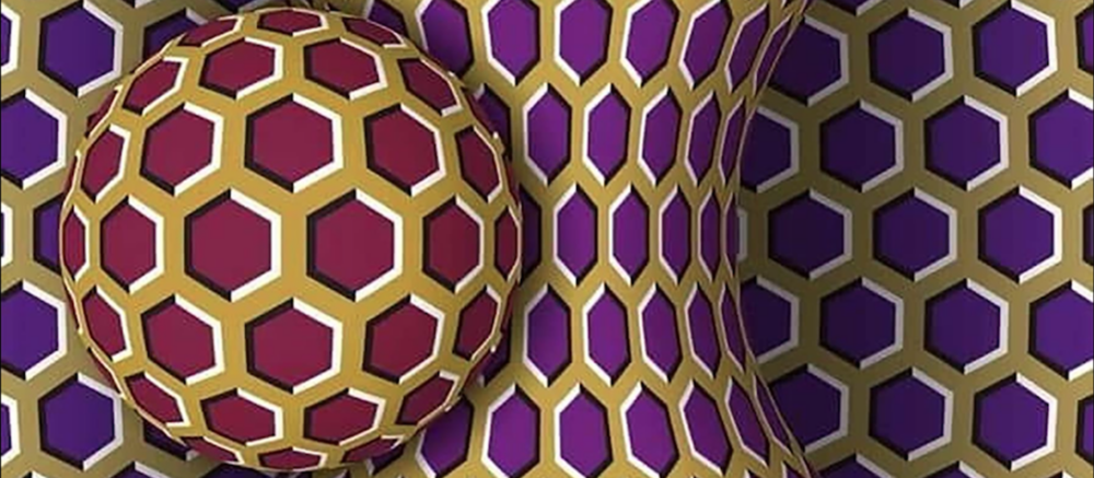 Rotating Snake Illusion (Alice Proverbio, université Bicocca de Milan