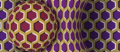 Rotating Snake Illusion (Alice Proverbio, université Bicocca de Milan