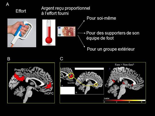 Les bases cérébrales de la motivation altruiste pour son propre groupe social (Jean-Claude Dreher)