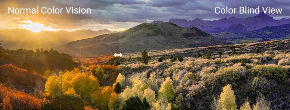 Comment un daltonien voit l'automne (©EnChroma)