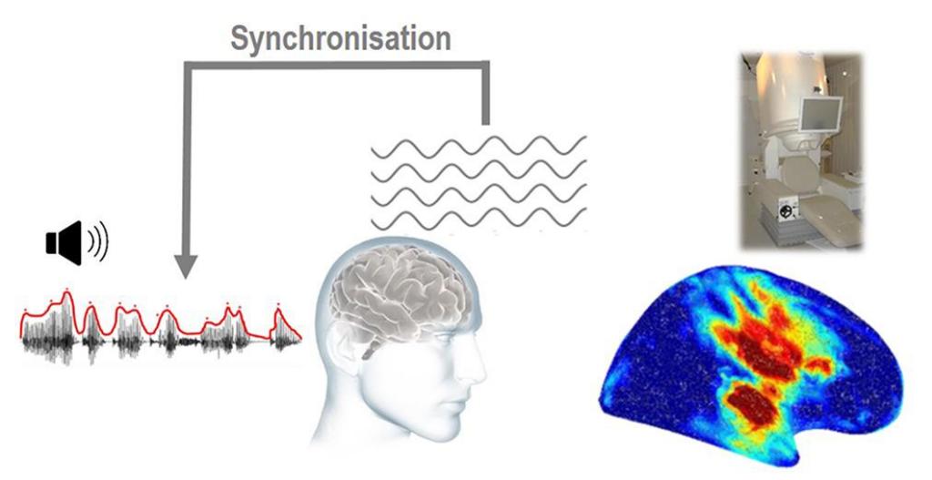 Synchronisation des ondes cérébrales sur le rythme de la parole (DDL-Aslan)