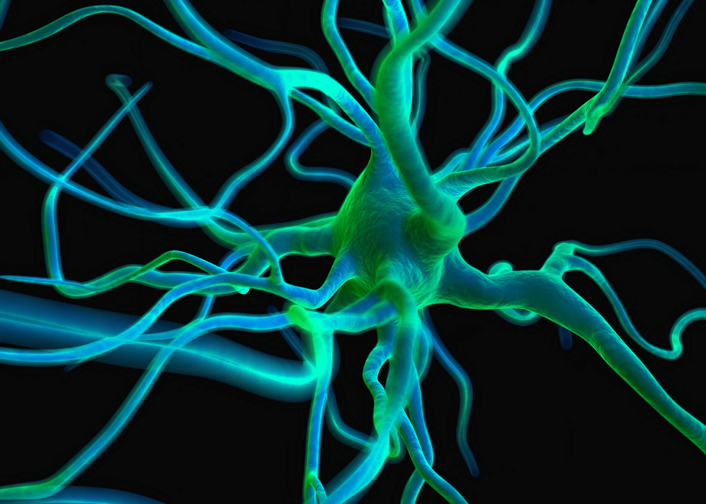 Neurone - Photo : Royaltyphoto/123RF