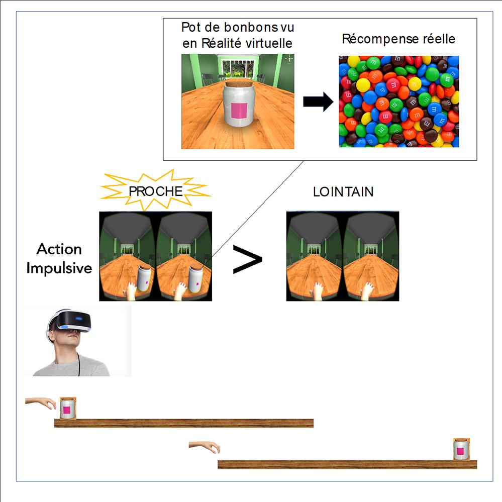 Rôle de la proximité physique dans la prise impulsive d'aliments : dispositif expérimental (D. O'Connor, JC. Dreher, ISCMJ)