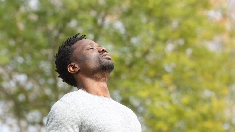 La respiration serait-elle le métronome du cerveau ? (©Shutterstock/Pheelings media)