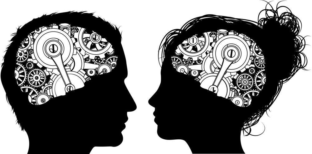 Neuromythe #7 : le cerveau des hommes est différent de celui des femmes ©Shutterstock/Christos Georghiou